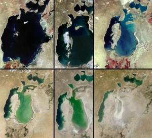 Photographs illustrating the diminution of the Aral Sea. From left to right: (top row) 1973, 1989, 1999, (bottom row) 2001, 2003, 2009 (US Geological Survey and NASA)