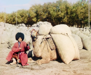 Turkmen man with camel, early 20th century (Sergey Prokudin-Gorsky)